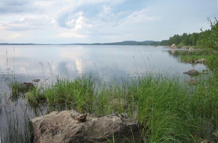 Viekijärven maisemaa Kylänlahdesta käsin
