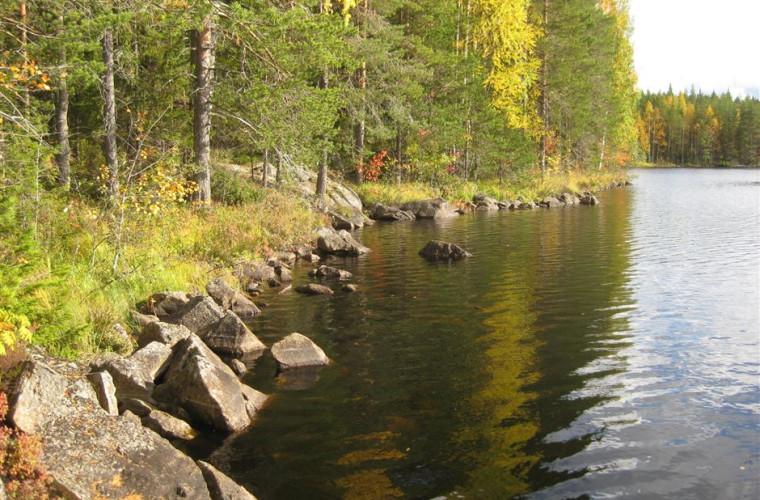 Eimisjärvi